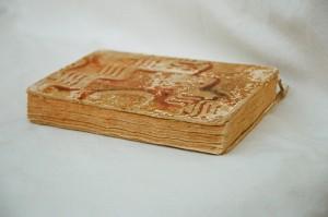 Bild des ältesten Buch im Archiv