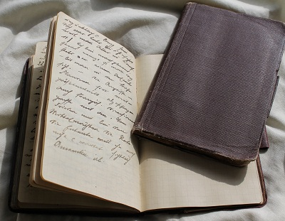 Die Bing - Tagebücher