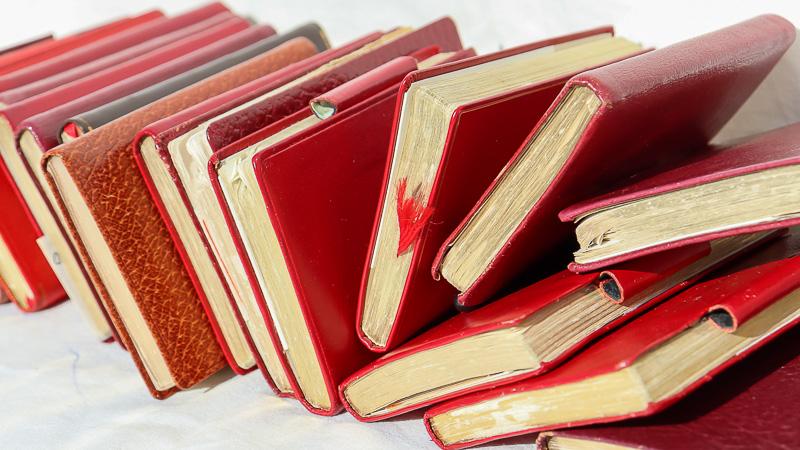 eine Reihe leicht abgegriffener, roter Tagebücher